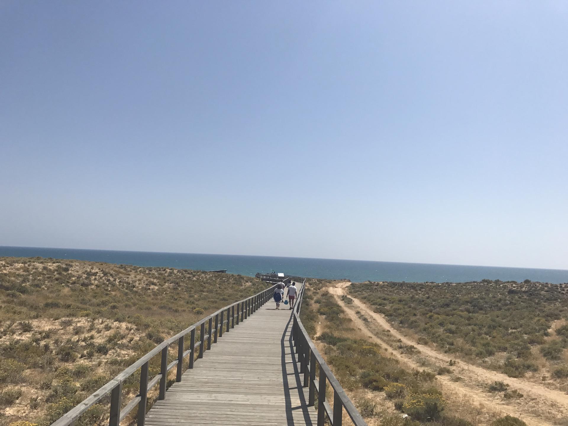 Die 10 schönsten Strände der Algarve